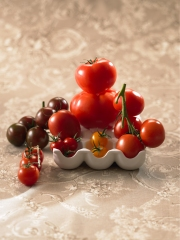 Tomates Photo : � AOPn tomates et concombres de France