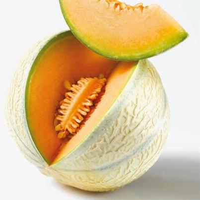 Le melon charentais jaune - Culture du melon charentais ...