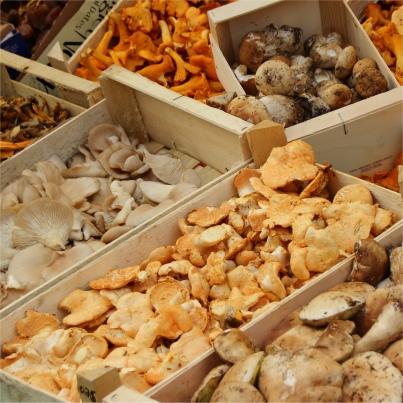 recettes base de champignons cuisiner les champignons. Black Bedroom Furniture Sets. Home Design Ideas